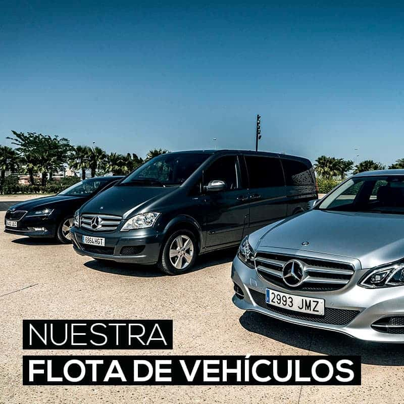 alquiler coches con conductor